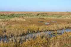 Cley by the Sea marshes from coastal path. View of salt marshes and ponds at Cley by the Sea stock photos