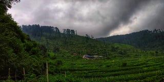 Rajghar. Click the photo rajghar enjoy time stock photography