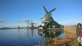 This click. Three windmill view Netherland royalty free stock images
