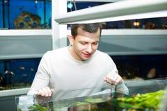Client achetant les poissons tropicaux Image libre de droits