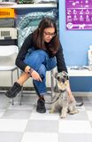 Client waiting with her pet in a veterinary clinic. Client waiting with her miniature schnauzer in a veterinary clinic woman healthcare medical medicine stock photo