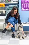 Client waiting with her pet in a veterinary clinic. Client waiting with her miniature schnauzer in a veterinary clinic woman healthcare medical medicine royalty free stock photography
