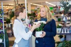Cliente di Assisting Happy Female del fiorista nell'acquisto Fotografie Stock