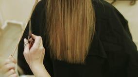 Cliente experto de Combing And Cutting del peluquero almacen de metraje de vídeo