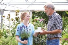 Cliente maschio che chiede al personale il consiglio della pianta al Garden Center Immagine Stock Libera da Diritti