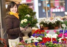 Cliente que selecciona las flores en el mercado Imágenes de archivo libres de regalías