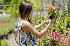 Cliente sveglio che compra alcune piante fotografie stock libere da diritti