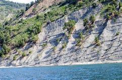 Clif con gli strati di roccia e dei boschetti del pino Fotografia Stock Libera da Diritti