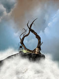 Cliff. Harp in a cliff in the ocean Stock Photos