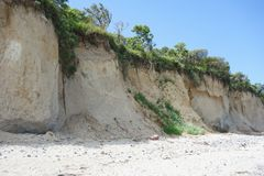 Cliff at the beach on Hiddensee Island, Germany. Wooded Cliff at the beach on Hiddensee Island, Germany stock image