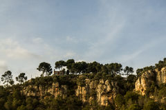 Cliff. A beautiful landscape with a cliff full of trees on covered by a clear, blue sky Royalty Free Stock Photo