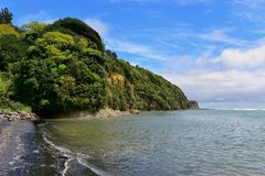 Cliff and black sand beach in New Zealand Royalty Free Stock Photo