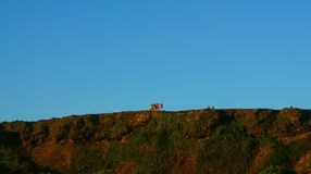 Cliff. Blue sky, cliff, team outdoors yough stock photography