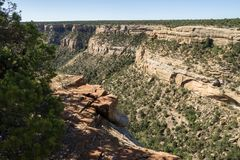 Cliff Canyon Overlook at Mesa Verde National Park stock photography