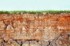 Cliff - Clay Soil And Grass Royalty Free Stock Photo