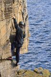 Cliff climber. Male climber on sandstone cliffs overlooking the sea stock photo