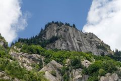 Cliff, Clouds, Conifers Stock Photos
