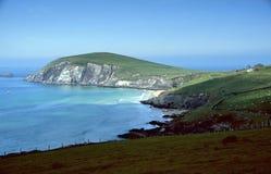 Cliff coast. Near Dingle in County Kerry, Ireland Stock Photography