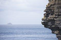 Cliff coast Tasman Peninsula southern ocean Stock Photo