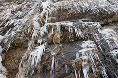Cliff covered in ice cycles. Stock Image