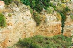 Cliff Detail Surface Plants Mediterraneo fotografia stock