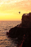 Cliff diver off the coast of Mazatlan at sunset Royalty Free Stock Photos