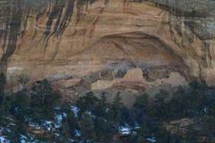 Cliff Dwelling i Mesa Verde NP fotografering för bildbyråer