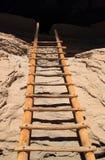 Cliff Dwelling Ladder royaltyfri bild