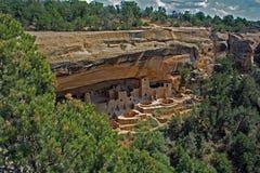 Cliff Dwellings i Mesa Verde National Park royaltyfria foton