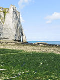 Cliff on english channel beach during low tide Stock Images