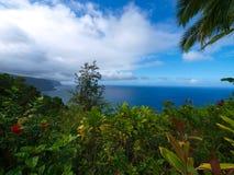 Cliff garden. In Big Island, Hawaii Stock Image