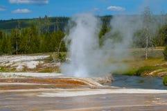 Cliff Geyser - Black Sand Basin Yellowstone Stock Photography