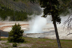 Cliff Geyser Royalty Free Stock Image