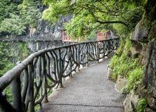 Cliff Hanging Walkway bij Tianmen-Berg, de Hemel` s Poort in Zhangjiagie, de Provincie van Hunan, China, Azië stock afbeelding