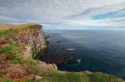 Cliff in Iceland - latrabjarg Stock Photos