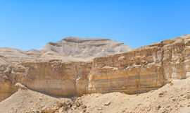 Cliff in negev royalty free stock images