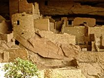 Cliff Palace ruins at Mesa Verde Royalty Free Stock Photos