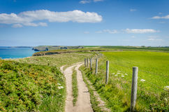 Cliff Path i Cornwall och blå himmel Arkivfoton