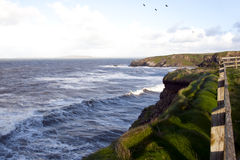 Cliff path and storm waves Stock Image