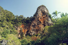 Cliff of Railay Bay in Thailand Stock Images