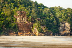 Cliff and rainforest in sand beach Stock Photo