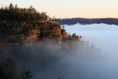 Cliff rises above fog Royalty Free Stock Image