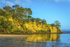 Sunrise Time at Scandrett Beach Auckland New Zealand. Cliff Rocky Headlands. Calm and Peaceful During Low Tide Royalty Free Stock Images