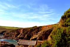 Cliff Side de point de lézard Image libre de droits