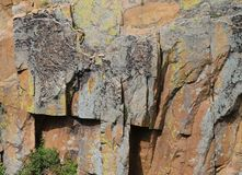 Lichens rock stock photos download 2031 images natural rock wall with lichens background cliff side in rocky mountain national park with shadows sciox Image collections
