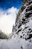 Cliff on the side of the Snowy Road on Marys Peak Oregon royalty free stock photos