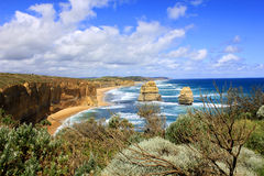 The cliff,the sky, the sea,the plant. A beautiful scenery on Australia in a nice day Stock Image