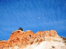 Cliff and sky with seagull near Albufeira. Looking up cliff near Albufeira, in Algarve, with a blue sky with clouds and a seagull flying Stock Photo
