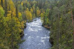 Cliff, stone wall, forest, waterfall and wild river view in autumn. Royalty Free Stock Photos