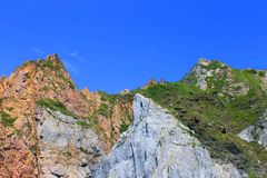 Cliff with vegetation Stock Photography